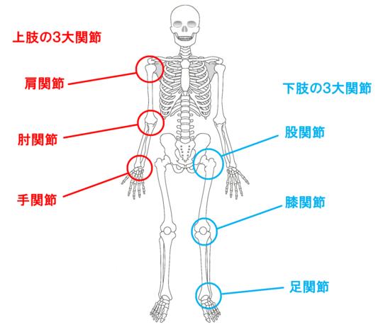 「関節機能障害」の画像検索結果